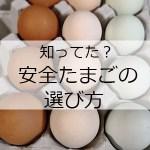 卵の殻の色・黄身の濃い薄いの違いは?スーパーで安全な選び方も!