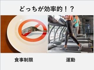 食事制限と運動