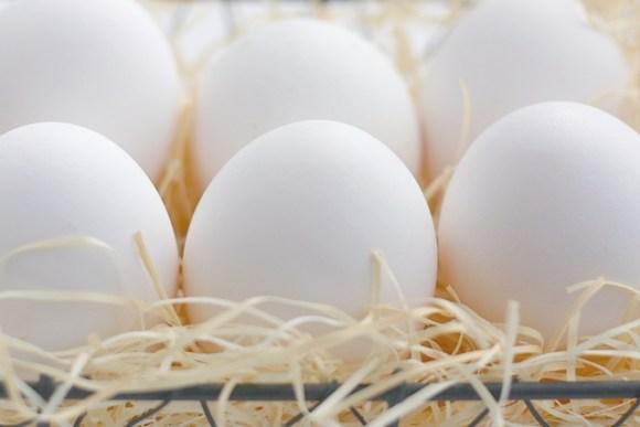 生卵・半熟卵・ゆで卵の賞味期限の平均ってどのくらいなの?