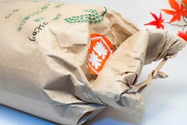 お米を30㎏購入!保存方法で気を付けることはある?