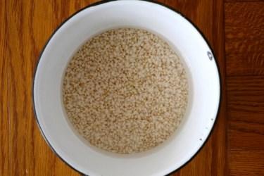 玄米を炊く前の水につけ置きする時間はどれくらいがいいの?