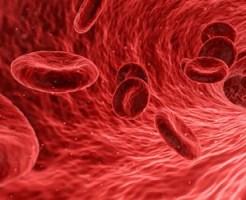 血管の中を流れる血液