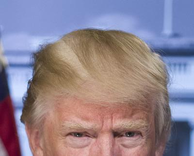 トランプの髪