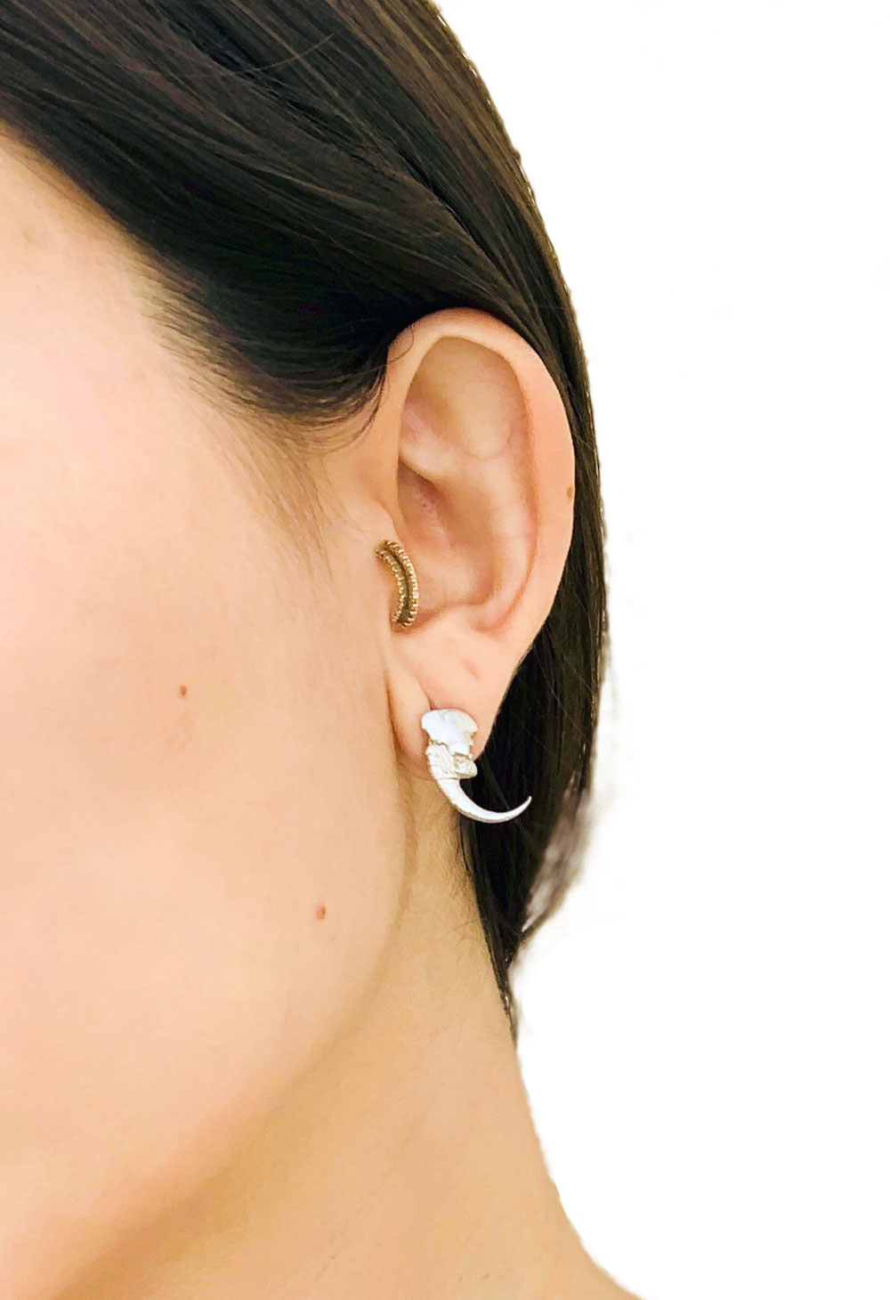 Stud earring, replicated from a long eared claw