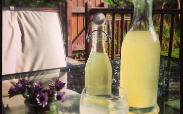 Homemade Lemon and Lime Cordial