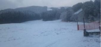 大晦日、県民の森は雪でした。