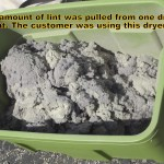 Lint collected from one dryer vent.