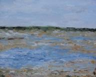 Shorebird Marsh