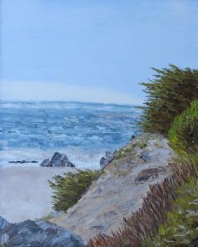 Shell Beach- Sea Ranch, California