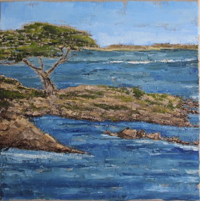 Coastal Cypress