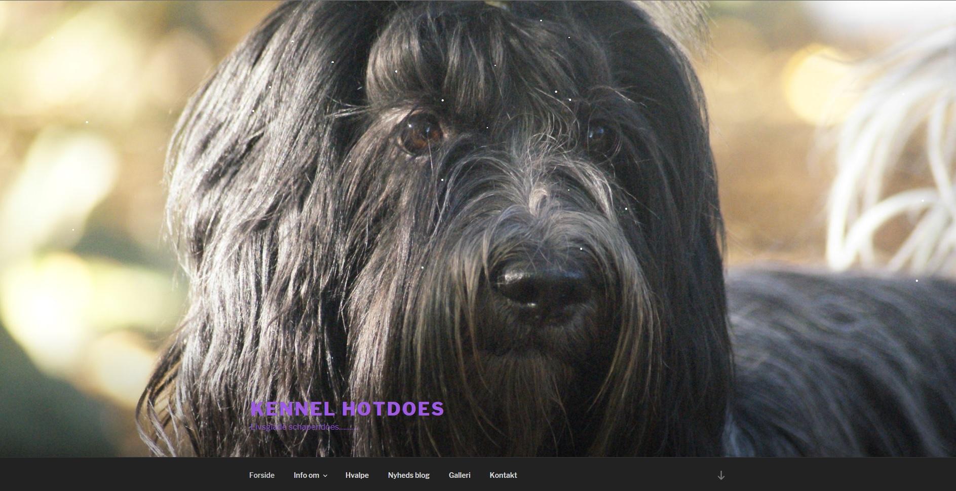 Hjemmeside Kennel Hotdoes schapendoes