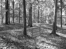 Confederate earthworks of Vaughan's brigade