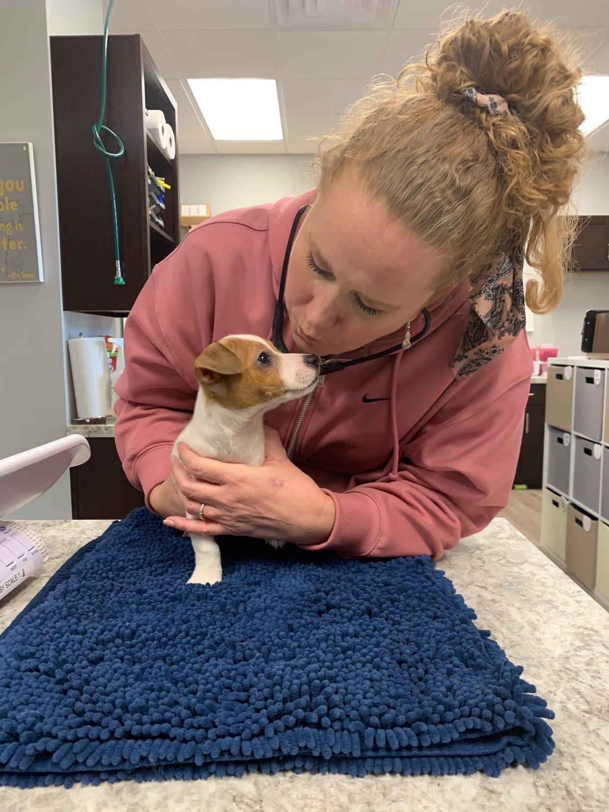 veterinarian_kennesaw_marietta