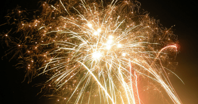 Fireworks and bonfire night advice issued