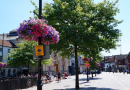 Newbury wins recognition for its blooms