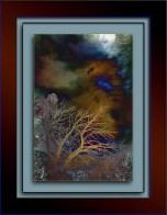 Shadows and Sun (1 of 1) art blog