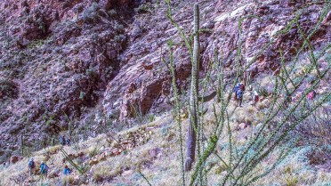 ventana-canyon-hike-0691-blog