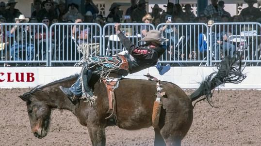rodeo-2017-0743-blog