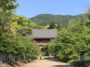 醍醐寺の神髄・上醍醐で人の『信じる力』を感じる