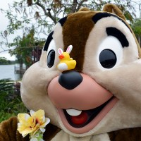 Easter Polynesian Resort character meet and greets 2014