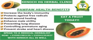 PAWPAW- CARICA PAPAYA- BROFRE - KENOCH HG HERBAL CLINIC