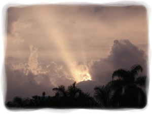 Cape Coral Sunbeams