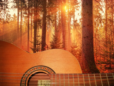 Guitar and autumn trees