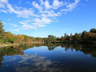 昭和記念公園の紅葉-Japan Nomad (13)