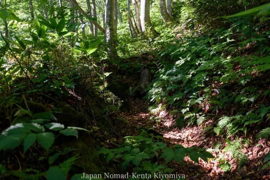 自転車日本一周123日目(岩木山)-Japan Nomad (36)