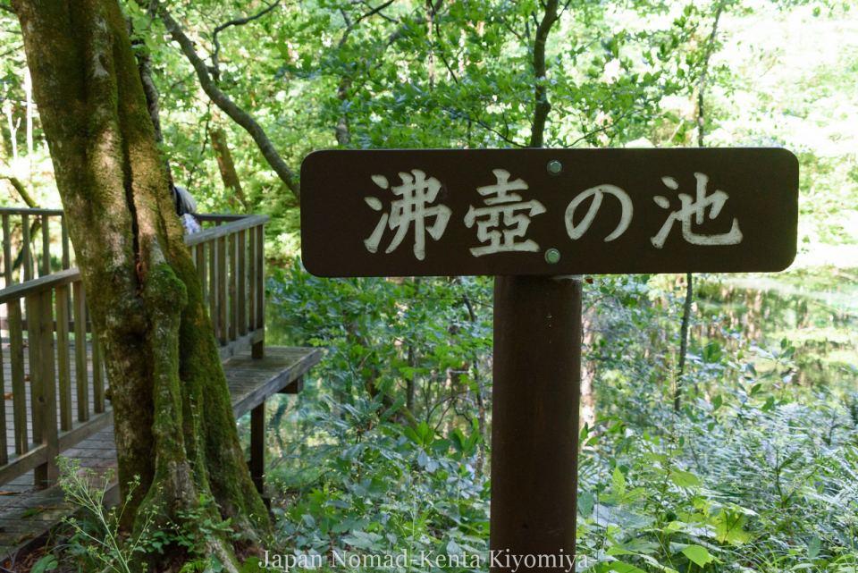 自転車日本一周125日目(白神山地、白神岳)-Japan Nomad (18)
