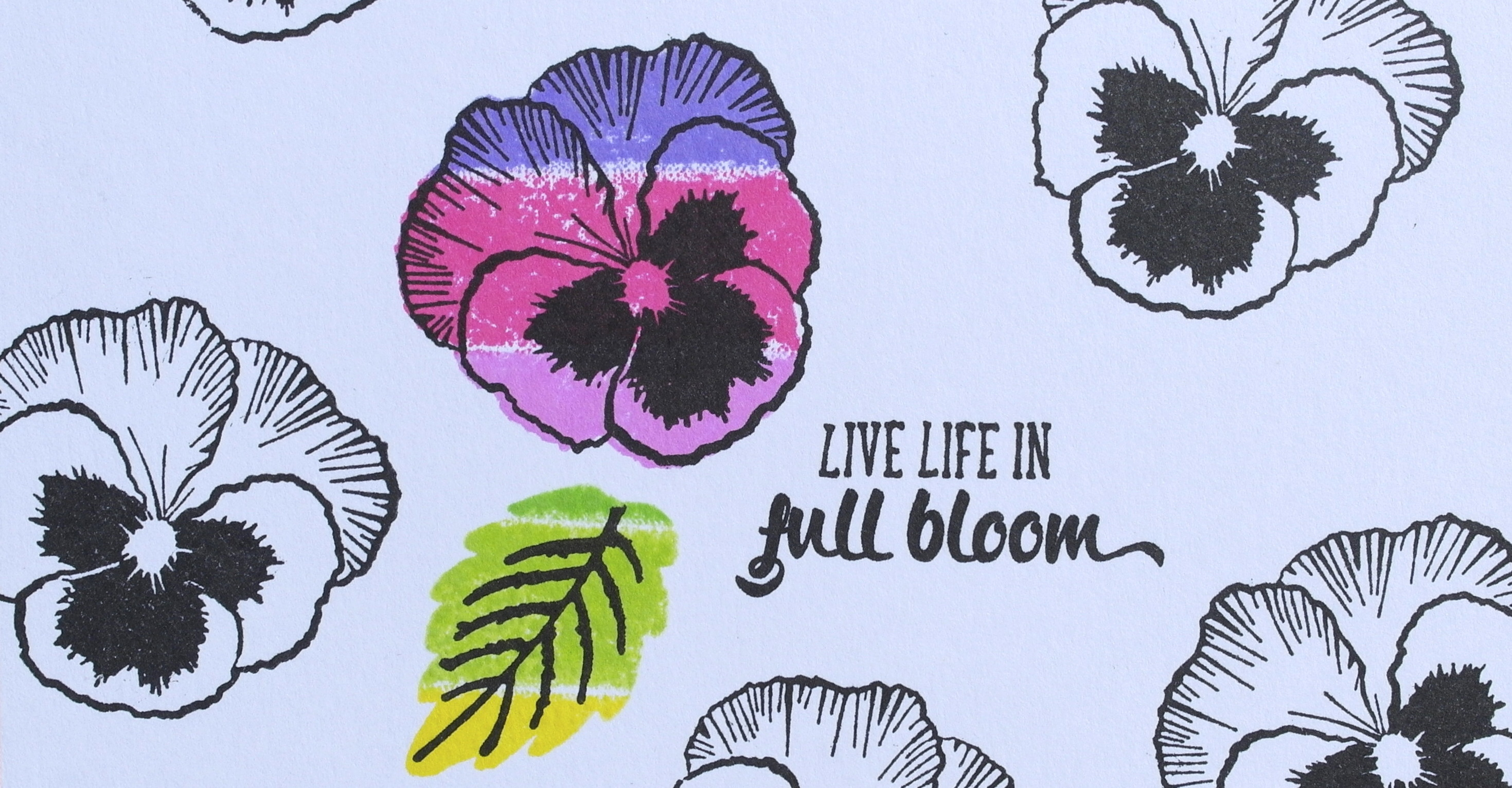 Creative Stamping – Live Life in Full Bloom