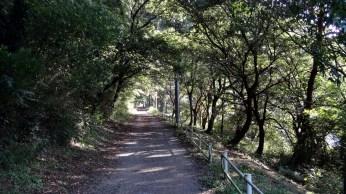 Hanami River Chiba 8 quiet path