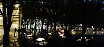 Keyaki Hiroba Plaza trees night close-up