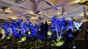 Keyaki Hiroba Plaza underneath Christmas lights