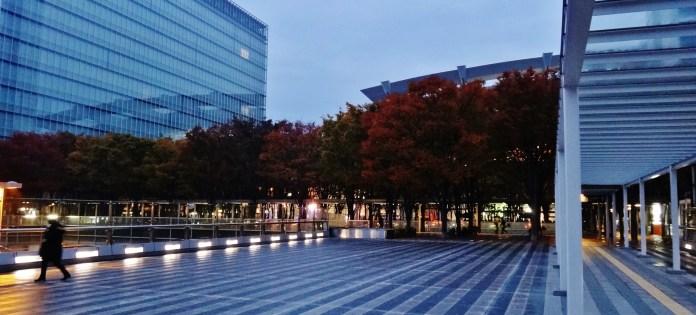 Saitama Sky Forest trees