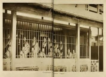 Yoshiwara courtesans in cages circa 1899