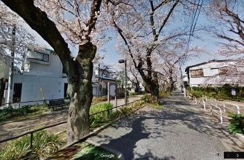 Tokyo river parallel lines map cherry blossoms