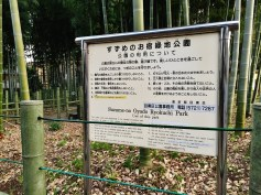 Suzume-no Oyado Ryokuchi bamboo park in Tokyo.