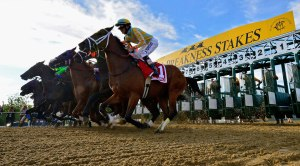 Preakness Stakes Online Betting
