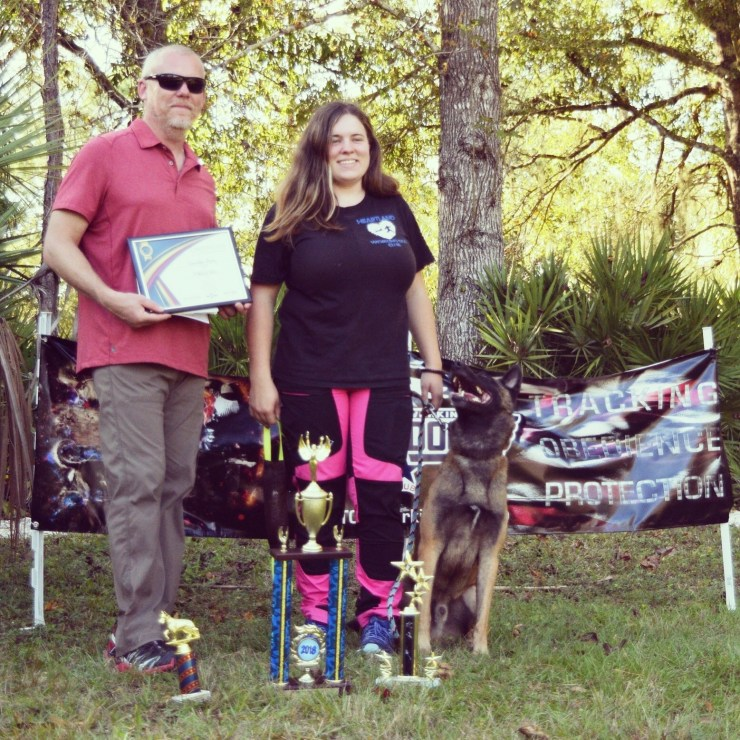 Dog-competition-trophies