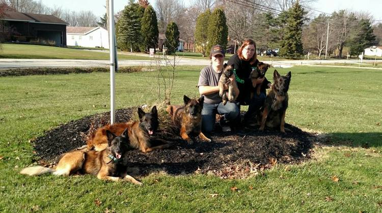 belgian tervuren group stay