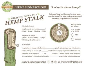 Hemp Stalk Homework