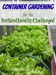 Container Gardening for the Horticulturally Challenged