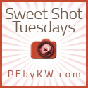 Sweet Shot Tuesday with Kent Weakley