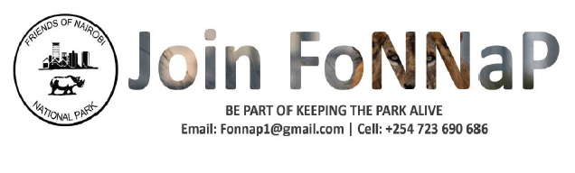 18th Edition of FoNNaP