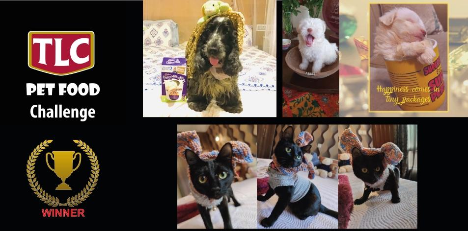 H&S Magazine's Digital Challenge Winners- Easter Pet Challenge- Win A TLC Pet Food Voucher Valued At KES3000!!