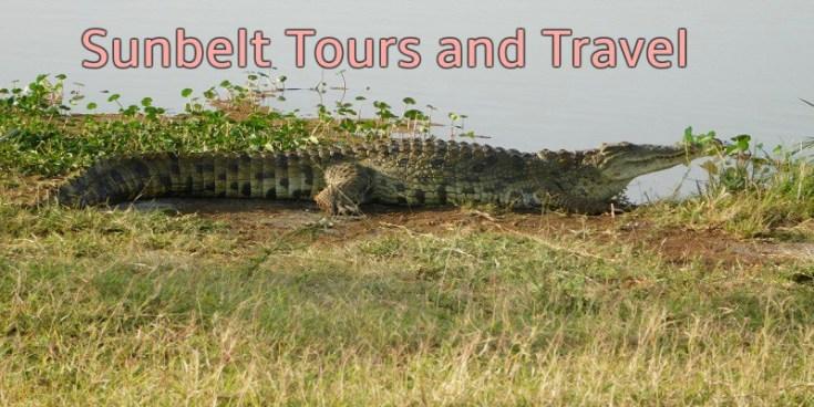 Sunbelt Tours - Websites, Blogs and Online Businesses for Sale in Kenya