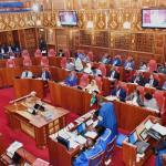 Senate Vote on BBI (1)