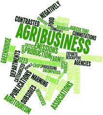 Schools, Colleges & Universities offering Agribusiness Management Certificate in Kenya