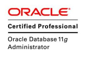 Best Oracle Database 11g Administrator Certified professional Colleges